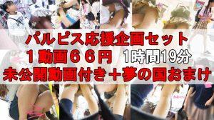 【66円1時間19分】パルピス応援セット【未公開有り】