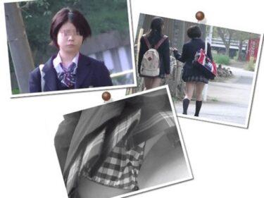 BORMAN:通学中に何度も撮られるJKちゃん vol.1